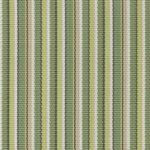 Delray Stripe Kiwi