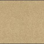 Texture - Sahara